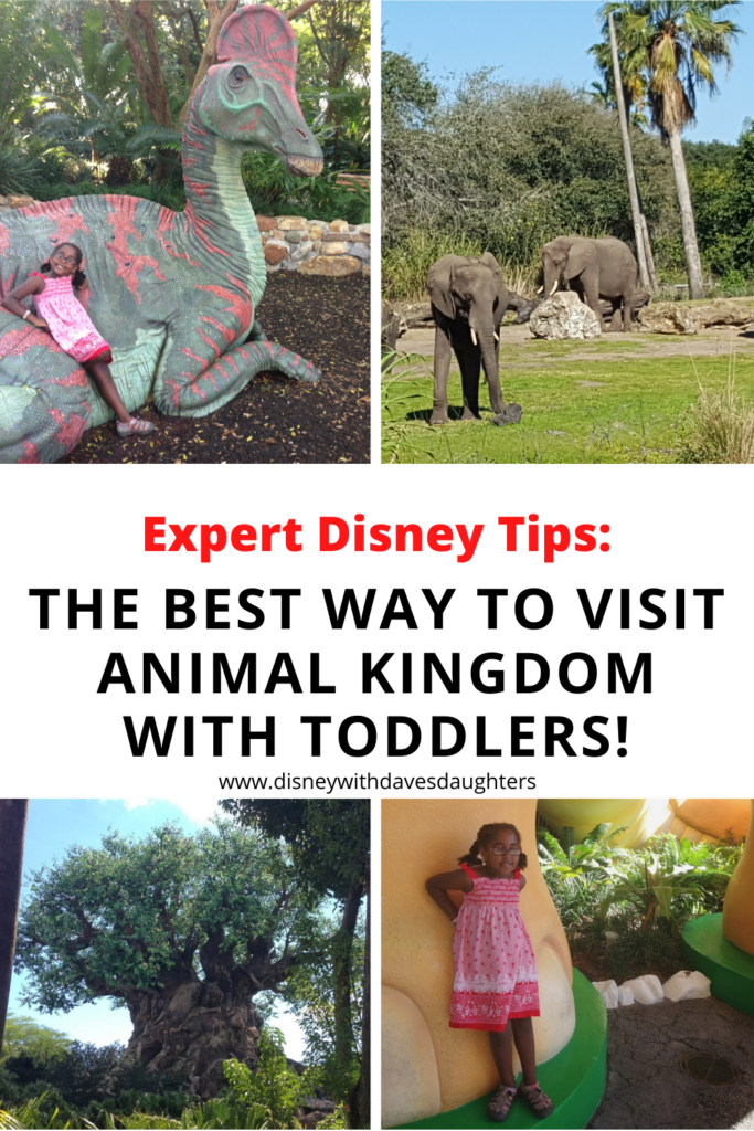3 Expert Tips for Taking Toddlers to Animal Kingdom