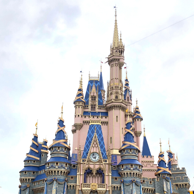 14 Things to Buy Before Your Disney Vacation